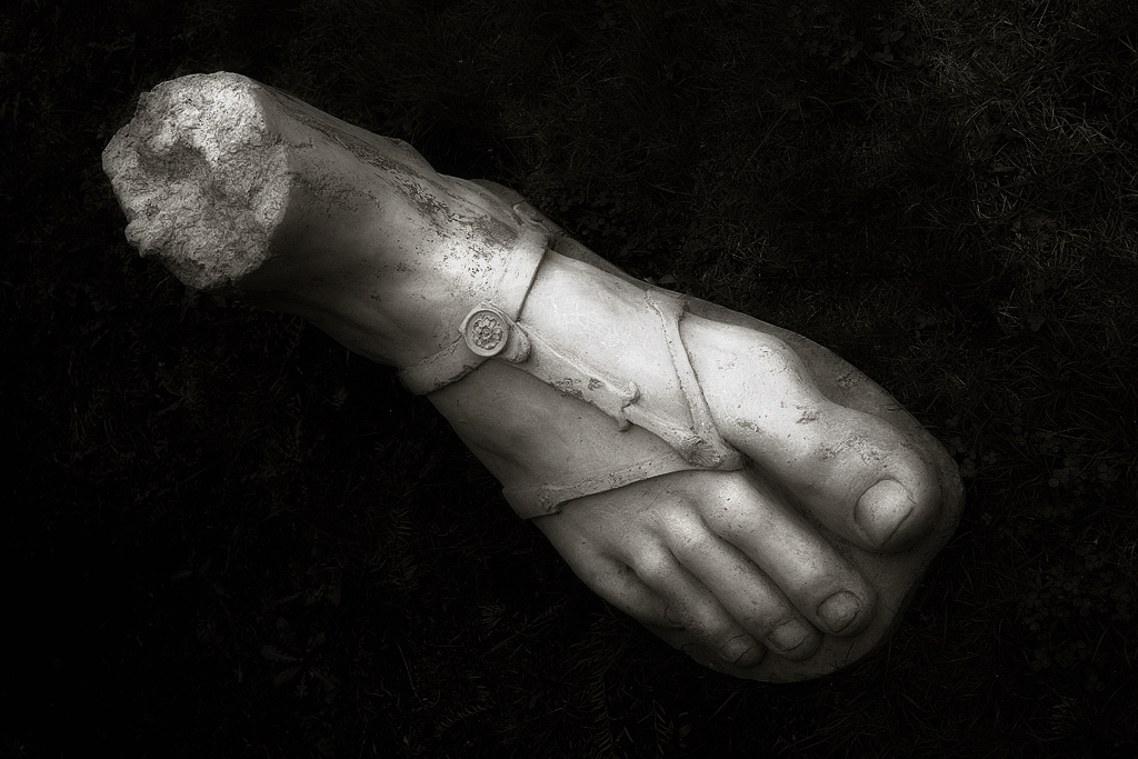 foot_sdim6078