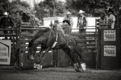 goshen-stampede-2014